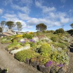 1.3 View from the Rockery in the Alpine Garden